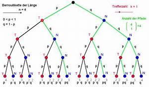 Bernoulli Kette N Berechnen : bernoulli ketten und binomialverteilung ~ Themetempest.com Abrechnung