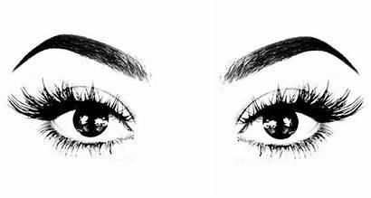Eyelash Extensions Makeup Lashes Eyelashes Beauty Eyes