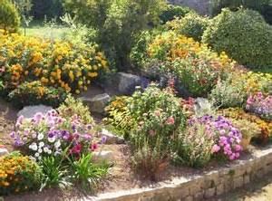 rocaille fleurie terrasse jardin pinterest With jardin en pente que faire 3 rocaille jardin creer une rocaille pratique fr