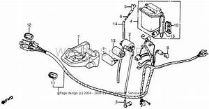 Wtb Honda Express Wiring Harness 1981 Nc50  U2014 Moped Army