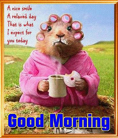 Morning Card Relaxed Say Greetings Cards Granny