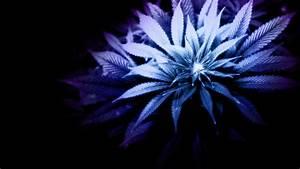 Marijuana weed 420 ganja e4 wallpaper   1920x1080   171586 ...