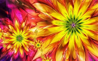 Abstract Multicolor Fractals Flowers Allwallpaper