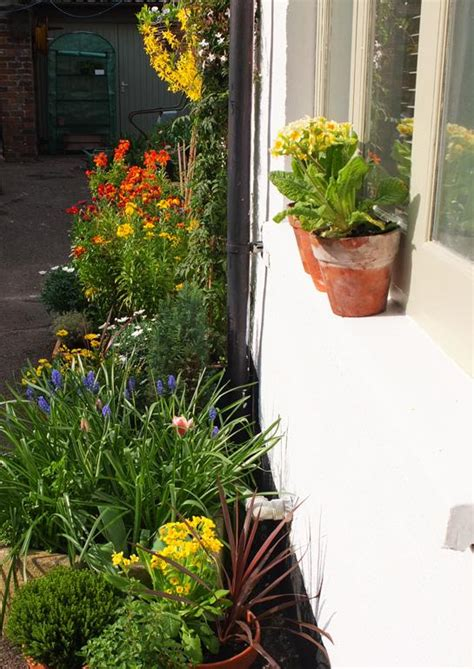 Container Gardening  Turning The Bad Into The Good