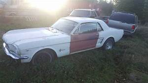 1966 V8 Mustang Coupe For Sale - Don't Drive Boring Cars
