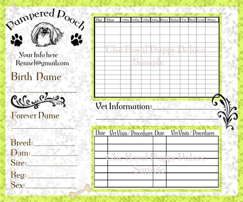 Pampered Pooch Green Customizable Vaccination Cards For Dog