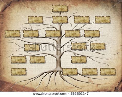 genealogy stock images royalty  images vectors shutterstock