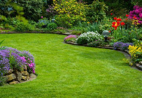 Ziersträucher Mit Obi Richtig Pflanzen Und Pflegen