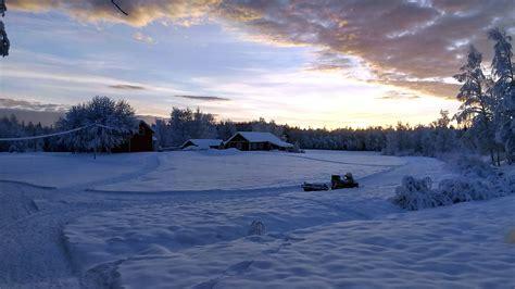 imagen gratis nieve paisaje sol arboles tiempo
