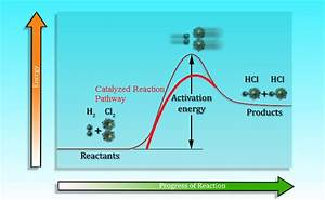 Chemical Reaction Catalyst  Rates  U0026 Overview