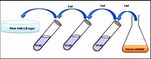 Schematic Diagram Representing Serial Dilution Of Stock