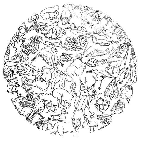 chambre bebe savane mandala d animaux pour enfant à colorier
