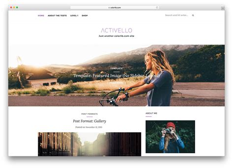 Top Free Photography Website Templates by 23 Best Free Themes Built With Bootstrap 2018