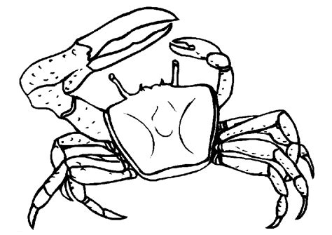crab template free printable crab coloring pages for