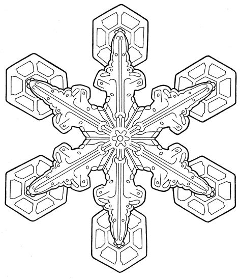 Coloring Page For Adults by Coloring Pages For Adults