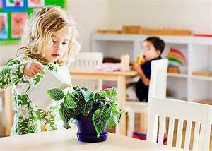 22 best images about Montessori Gardening on Pinterest