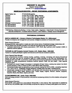 senior sales executive resume samples free samples With examples of senior executive resumes