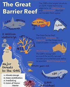 the greatbarrierreef species and threats infographic