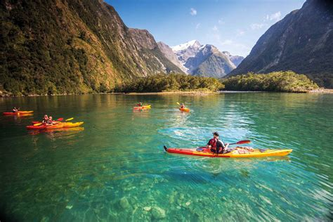 Cruise And Kayak Milford Sound Southern Discoveries