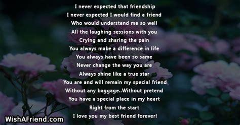 expected  friendship true friends poem