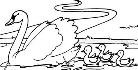 cygne 15 animaux coloriages 224 imprimer
