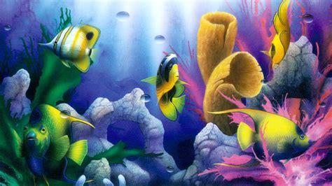 natures aquarium hd desktop wallpaper widescreen high
