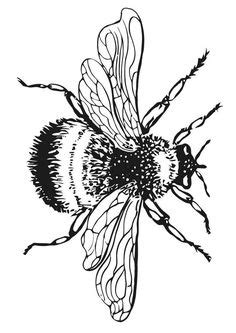 The Bees | Odyssey Articles | Pinterest | Bee tattoo, Tattoos and Bee