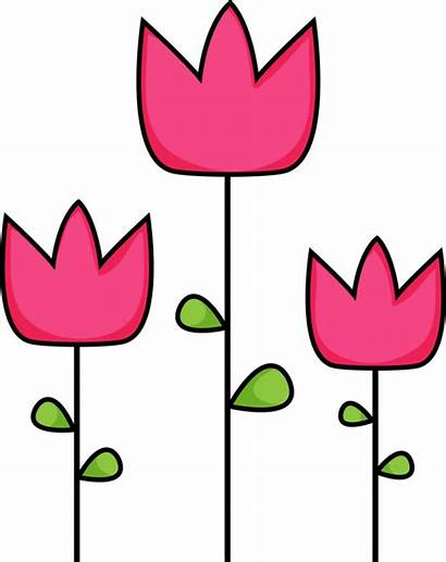 Tulip Clip Clipart Pink Tulips Spring Library