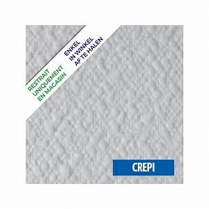 Crépi Intérieur Au Rouleau : peinture crepi interieur rouleau crepis interieur le ~ Dailycaller-alerts.com Idées de Décoration