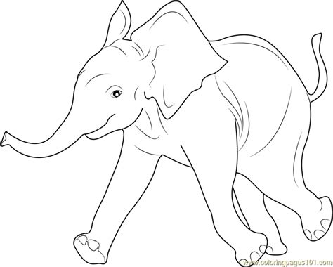 baby elephant coloring page  elephant coloring pages