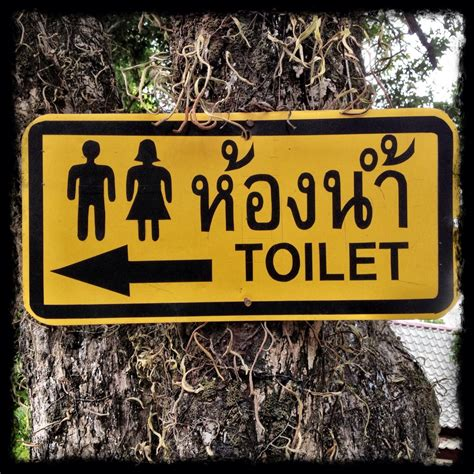 Thai Signs Toilet  Richard Barrow In Thailand. Teacher Murals. Where Can I Get Stickers Made For Cheap. Water Drain Murals. Warrior Lettering. Electrician Banners. Boboiboy Stickers. Workplace Safety Signs Of Stroke. Pictograms Signs