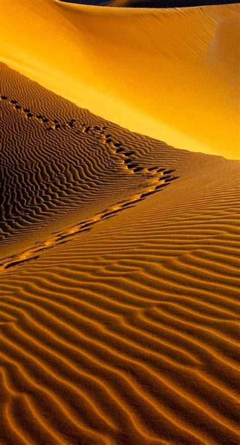 Desert Landscape Wallpapersc Iphone6splus