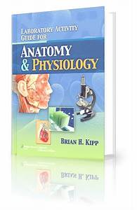 Surgery Made Easy  Laboratory Activity Guide For Anatomy