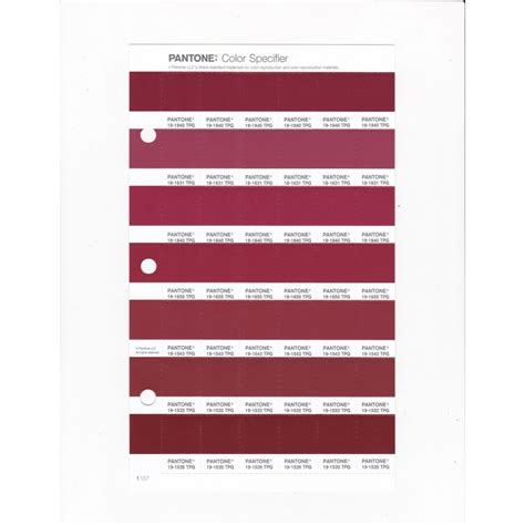 pantone   tpg brick red replacement page fashion