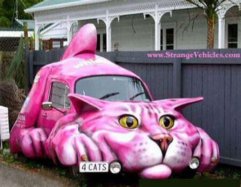 cat car pet picture cat car mobile