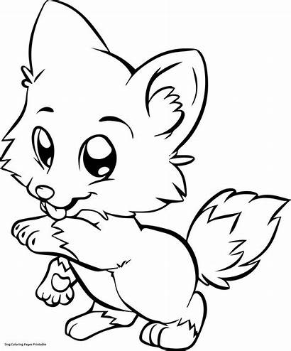Maltese Drawing Coloring Pages Dogs Clipartmag