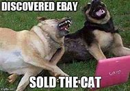 Super Funny Animal Memes Dog