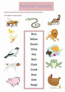 Comfortable Animal Sound Matching Animals Worksheets For ...