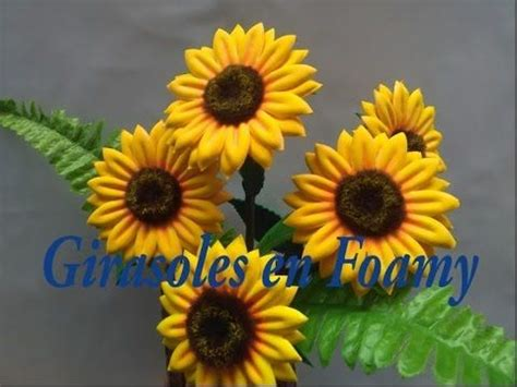 20+ Inspiration Como Hacer Flores De Foamy Moldeable