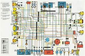 Diagram  Suzuki Vs 1400 Wiring Diagram Full Version Hd Quality Wiring Diagram