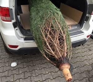 Wann Stellt Man Weihnachtsbaum Auf : best 28 wann stellt weihnachtsbaum auf weihnachtsbaum schm 252 cken 10 inspirationen k 252 ~ Buech-reservation.com Haus und Dekorationen