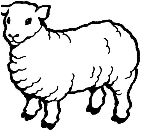 Preschool Coloring Page Of A Sheep Face