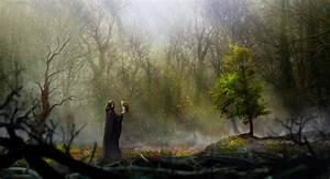 The Dark Kingdom - Secret garden by Silberius on DeviantArt