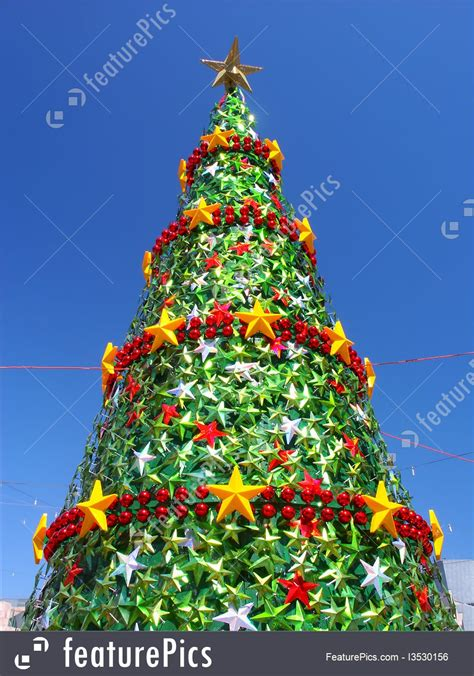 christmas tree melbourne australia photo