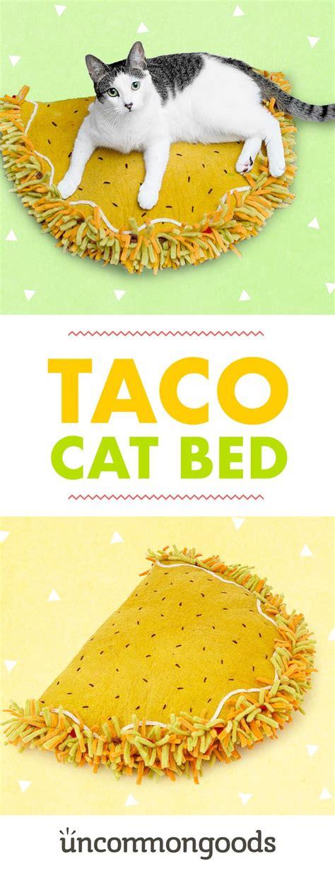 cool cats ideas  pinterest cat house diy cat