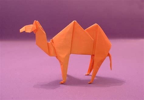 origami camels gilads origami page