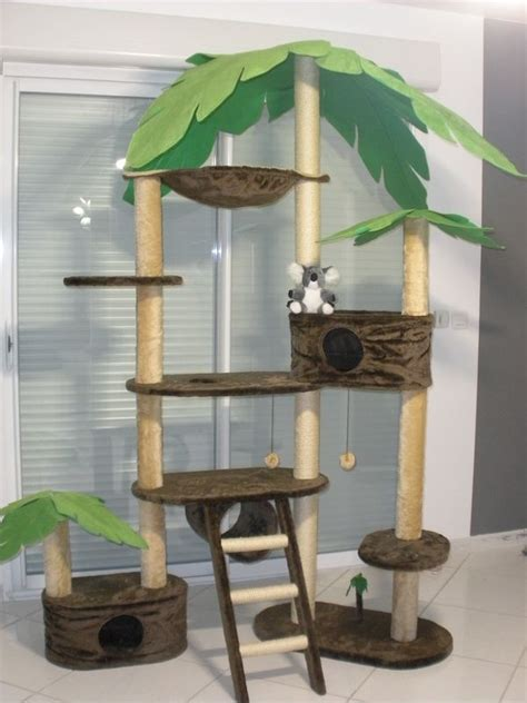 arbre a chat plante