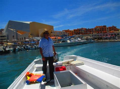 Glass Bottom Boat Cabo by Water Taxi 2012 Trip Leaving Medano Picture Of