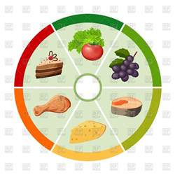 food chart with different types of food products infografics vector clipart image 100576