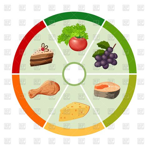 different types of cuisine food chart with different types of food products
